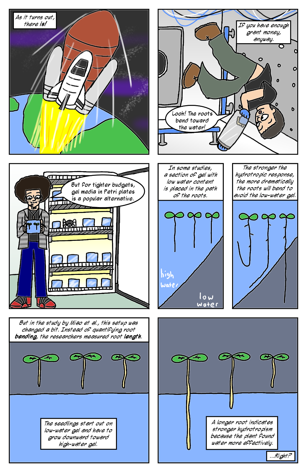 hydrotropism methods (2)